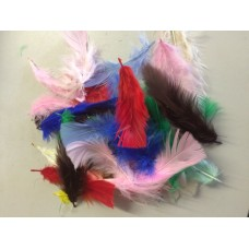 Craft Feathers Mixed Colors 5 Gram